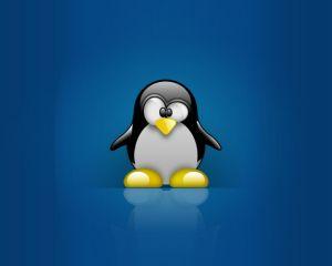 Windows 10 : sa récente build 14251 cacherait un sous-système de Linux !