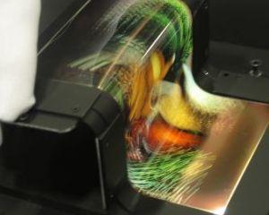 Nokia fait un bond en avant avec son écran OLED totalement flexible