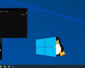 WSL 2 débarque dans Windows 10 pour les Insiders