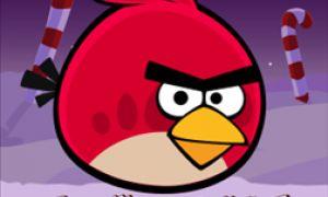 [MAJ] Angry Birds Seasons est disponible sur Windows Phone 7 et 8