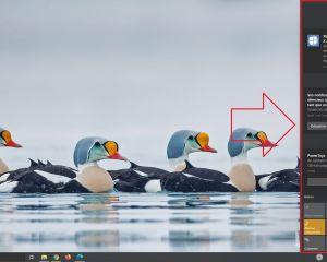 Comment désactiver ou supprimer temporairement les notifications sur Windows 10?