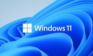 Windows 11 : la build 22000.132 est disponible pour les Insiders