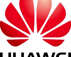 Huawei continue à soutenir Windows Phone