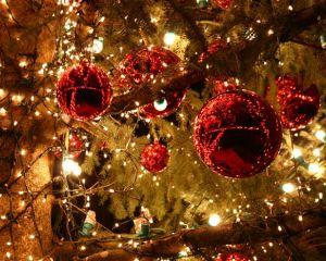 MonWindowsPhone vous souhaite un Joyeux Noël !