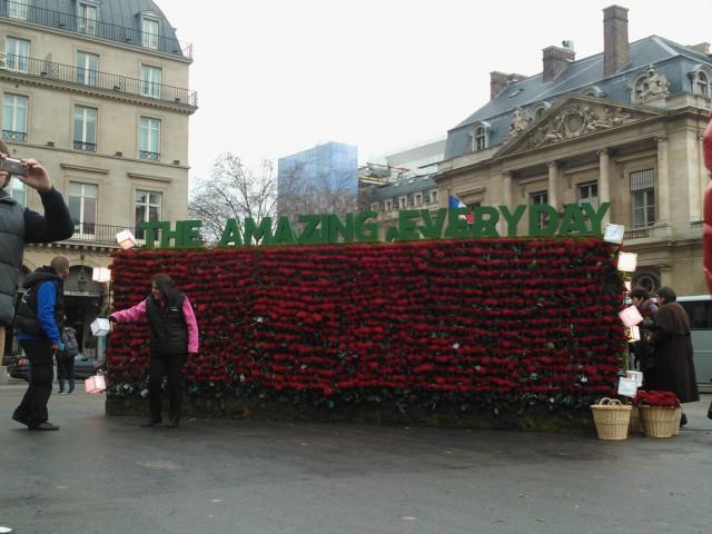 nokia fleurs saint-valentin