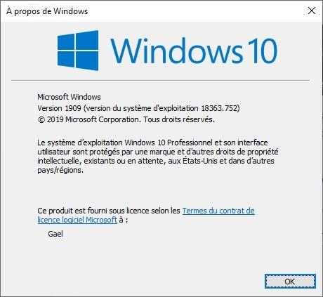 build-version-windows-10-2