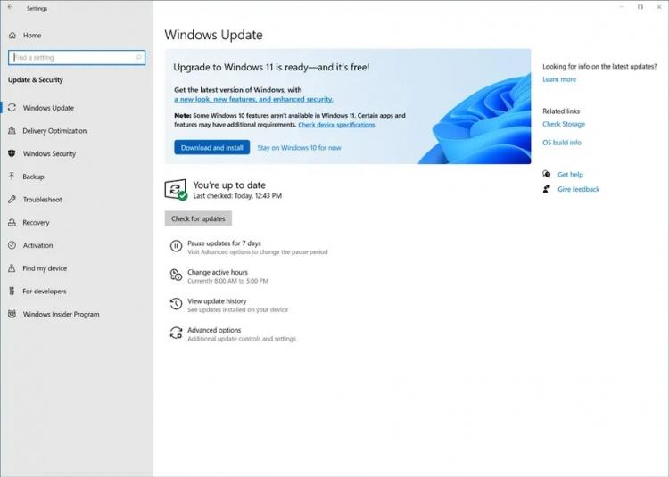 windows-11-notif